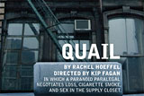 Quail by Rachel Hoeffel